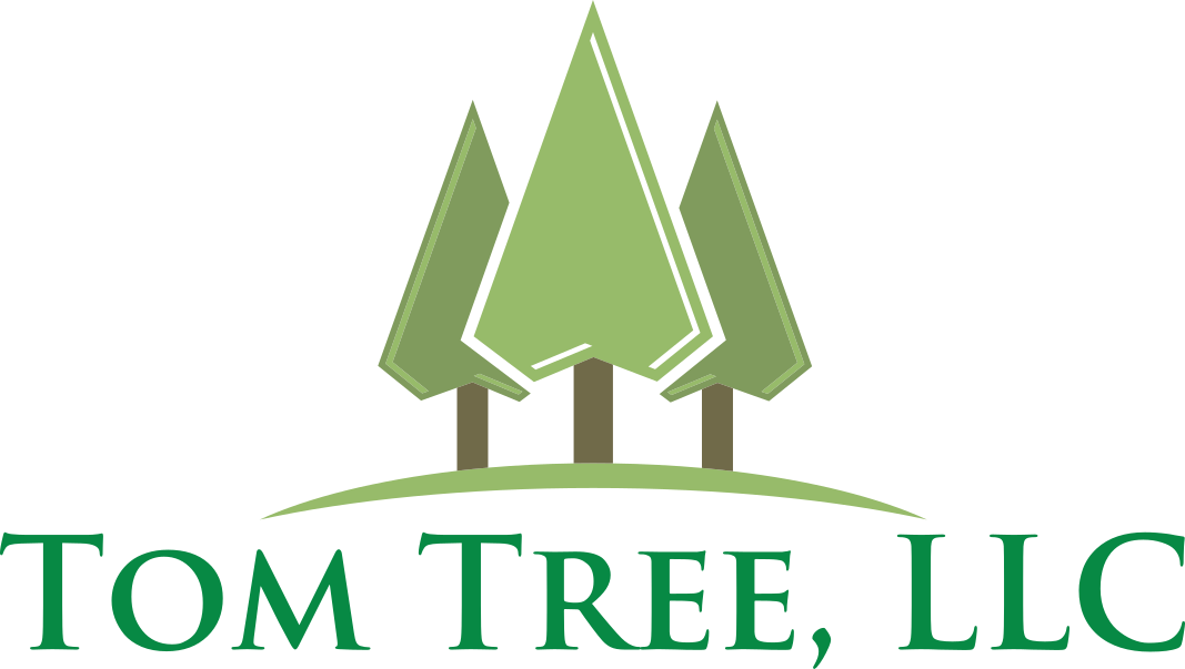 Professional Tree Trimming, Tree Removal, Painting, & Drywall Services